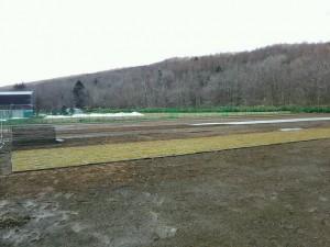 2016.4.12農場風景